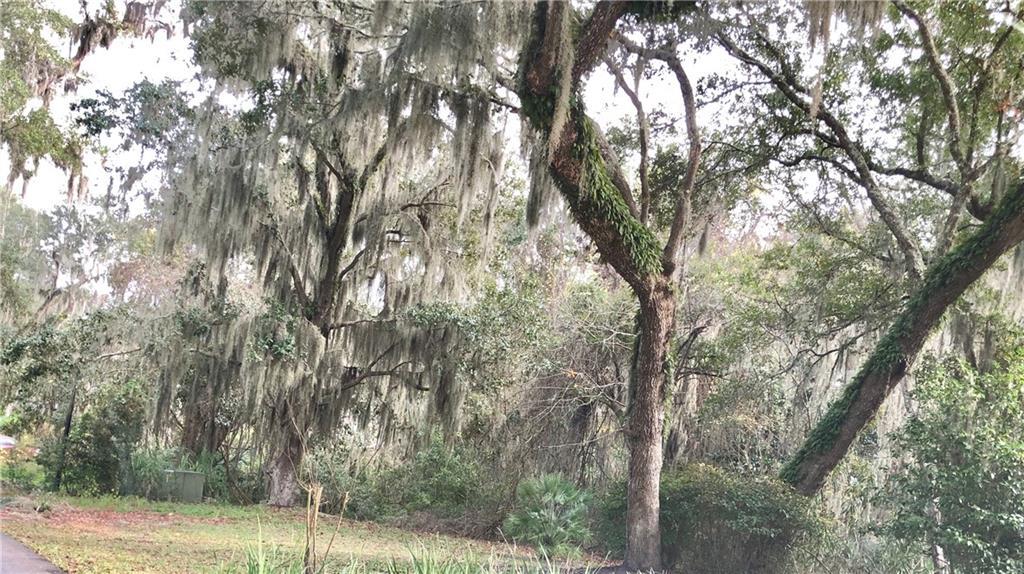 Natures Gate Court Fernandina Beach, FL 32034