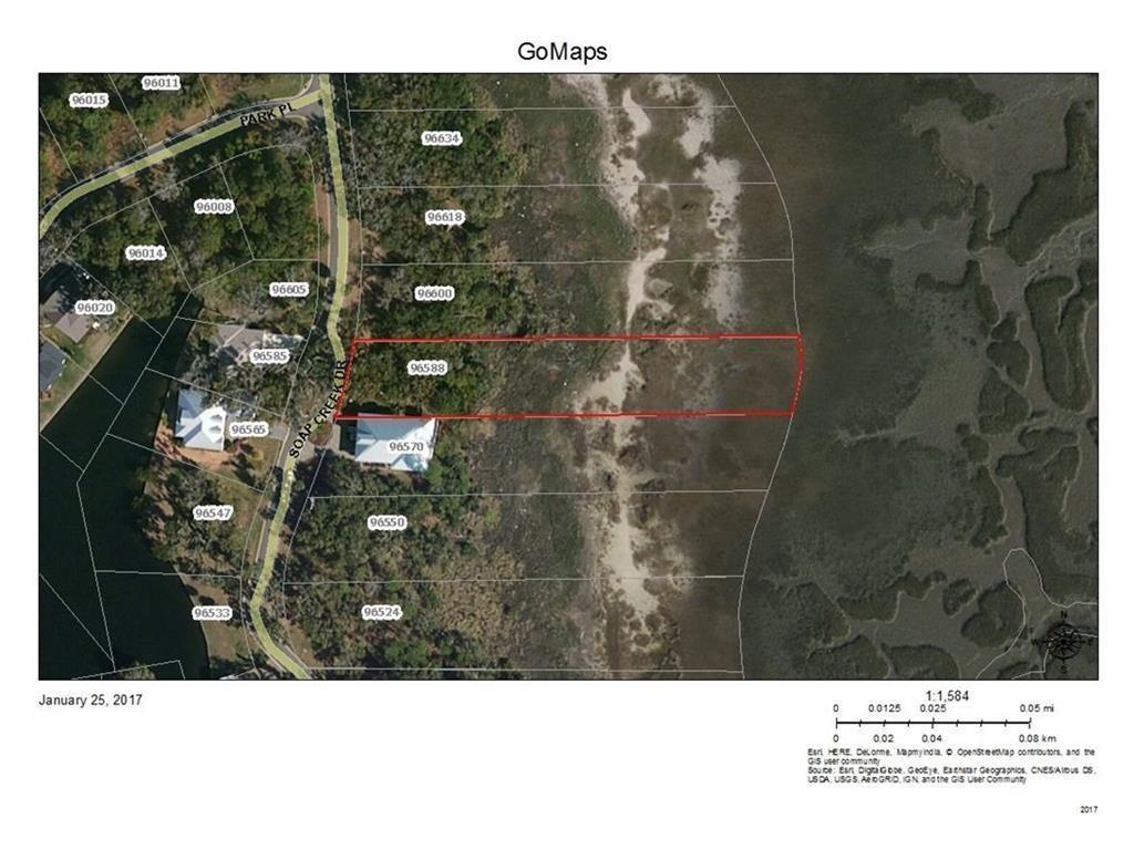 96588 E Soap Creek Drive Fernandina Beach, FL 32034