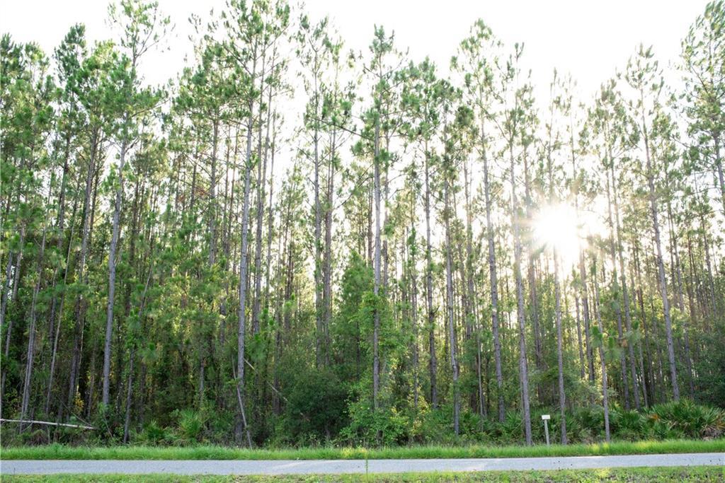 Sheared Stokes Road Hilliard, FL 32046